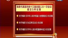 海南代表团以代表团名义向大会提交5件议案 彰显大局意识和担当精神