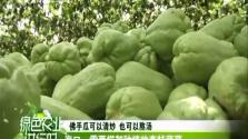 《绿色农业进行时》2018-06-20