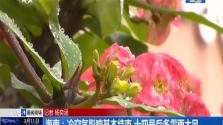海南:冷空气影响基本结束 十四号后多雷雨大风