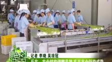 乐东:农业结构调整见效 毛豆产业链趋成熟