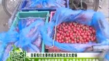 《绿色农业进行时》2018年04月15日