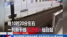 新干线司机行驶中睡着 列车自己开10公里冲进站