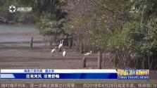 《中国旅游新闻》2018年04月02日