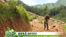 《绿色农业进行时》2018年06月30日
