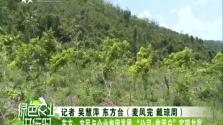 """东方:农民与企业抱团发展 """"公司+贫困户""""实现共赢"""