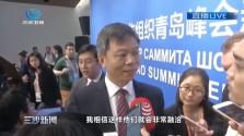 廖进荣:青岛峰会将推动上合组织安全合作迈向新台阶