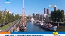 鹿特丹港:港城融合发展模式的典范