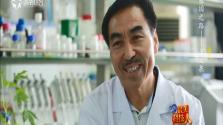 最美科技人 基因之路——王文泉