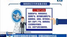 海南谋划2019年省重点项目 将以发展旅游业 现代服务业和高新技术产业为主导