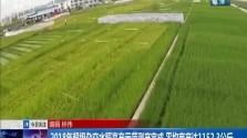 2018年超级杂交水稻高产示范测产完成 平均亩产达1152.3公斤