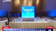 自贸快讯:三亚总部经济及CBD启动区优秀设计方案出炉