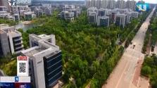 海南生态软件园发力布局区块链产业 与牛津大学、中国人民大学等展开合作
