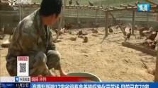 海南拟新建17家省级畜禽养殖标准化示范场 目前已有70家