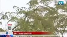 最低11℃!海南受冷空气和热带扰动影响 未来3天都是阴雨天