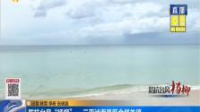 """防抗台风""""杨柳"""" 三亚涉海景区全部关停"""