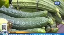 海南国庆黄金周市场物丰价稳 全省社会消费品零售总额约47.8亿元