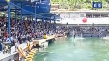 国庆黄金周 海岛游受追棒 海陆空产品丰富 提升游客体验