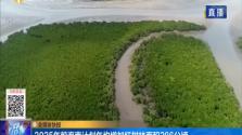 2025年前海南计划年均增加红树林面积286公顷