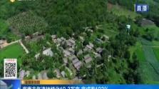 海南去年造林綠化19.3萬畝 完成率193%