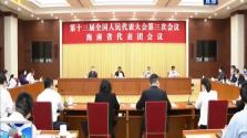 聚焦两会 海南代表团举行全体会议 推选刘赐贵为代表团团长 沈晓明 许俊为副团长