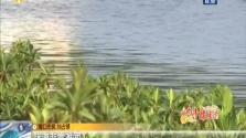 海南:水清岸绿让生活更美好