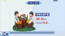 海南:热带特色农业为经济发展注入新活力