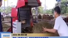 """秸秆""""变废为宝"""" 保护环境促进农民增收"""