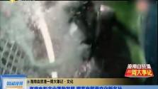 海南自贸港一周大事记▪文化 海南电影产业蓬勃发展 擦亮自贸港文化新名片