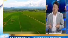 海南潮:永久基本农田调整补划——如何平衡粮食安全与发展空间?