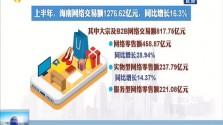 上半年海南网络交易额超1200亿元 服务型网络零售额大幅增长