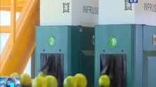 琼中:创新正宗果品管理模式 为琼中绿橙上市开道