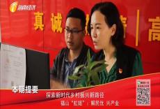 """追寻 探索新时代乡村振兴新路径 福山""""虹姐"""":解民忧 兴产业"""