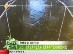 東方:發揮沿海特色優勢 發展養蝦產業助力脫貧攻堅