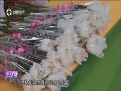 """清明:海口啟動""""文明祭掃""""活動"""