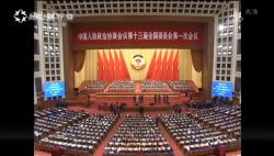 《海南新闻联播》完整版视频2018年03月15日