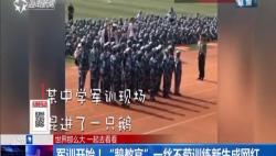 """军训开始!""""鹅教官""""一丝不苟训练新生成网红"""