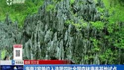 海南3家單位入選第四批全國森林康養基地試點