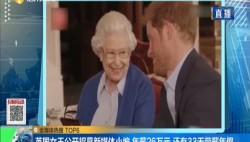 英国女王公开招募新媒体小编 年薪26万元 还有33天带薪年假
