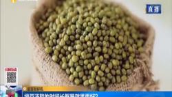 谣言粉碎机:绿豆汤熬的时间长解暑效果更好?