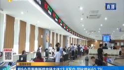前8个月海南新增市场主体13.8万户 同比增长50.7%