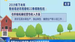 海南出台22条措施 促进下半年农民增收
