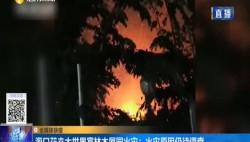 海口花卉大世界富林木屋园火灾:火灾原因仍待调查