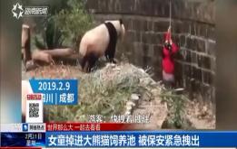 女童掉进大熊猫饲养池 被保安紧急拽出