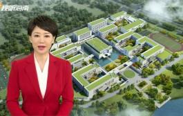 AI播報丨海口4所新建公立學校(校區)今秋開學啟用