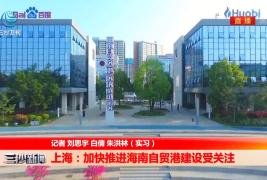 上海:加快推进海南自贸港建设受关注