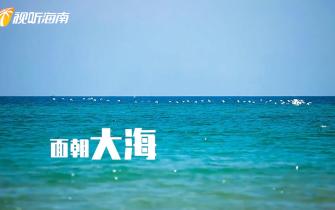 """""""自由贸易港 欢乐旅游岛""""HIGO海南欢乐节(8)"""