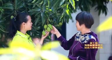 第七届海南省道德模范候选人事迹展播 黄凌燕:特殊的生意人