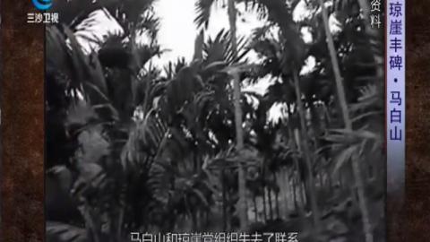 瓊崖豐碑·馬白山