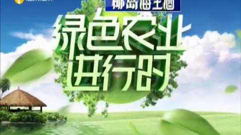 《绿色农业进行时》2019年10月09日