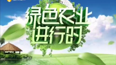 《綠色農業進行時》2020年04月01日